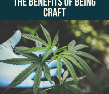 Benefits of being craft